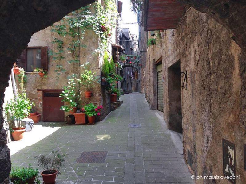 b_800_600_16777215_00_images_images_caprarola-borgo.jpg