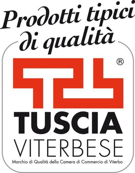 b_800_600_16777215_00_images_images_logo-tuscia-2.jpg
